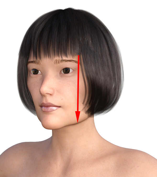 横顔のエラが目立つ2011-1