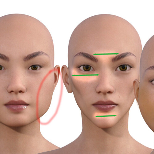 顔型別のメイクの仕方500-000