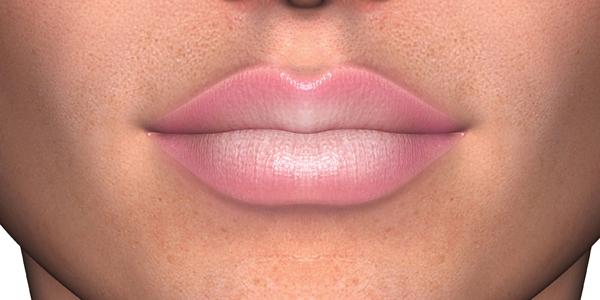 lip14